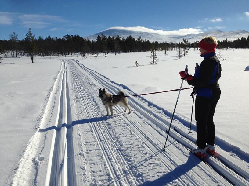 skitur-web
